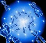immagine rappresentativa della notizia Abuso di alcol e disturbi alimentari, possibile legame genetico