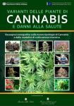 immagine rappresentativa della notizia Varianti delle piante di cannabis e danni alla salute, on-line il manuale iconografico